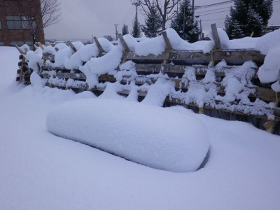 ベンチは雪に埋まっていますが